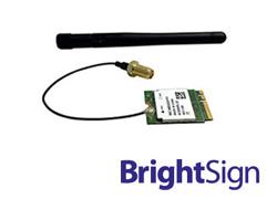 BrightSignオプション製品